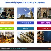 What are the six crucial players that are required for a successful Scale-up ecosystem?